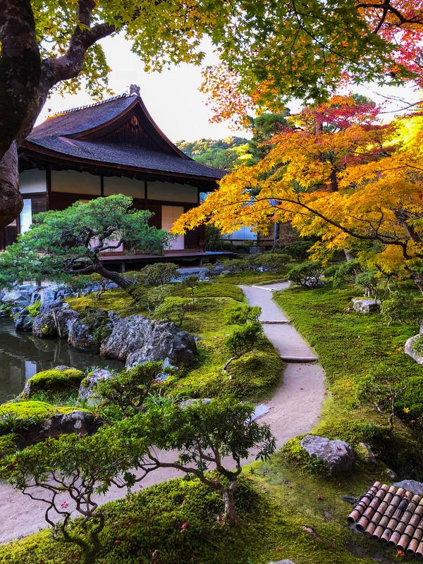 やっぱり好き 銀閣寺「東求堂」