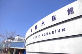 発見がたくさん 京都水族館
