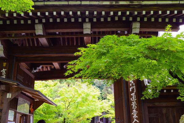 お寺大好き 京都お寺巡りウォーキングツアー 東